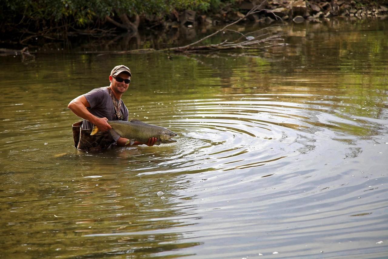 curso de pescaria online